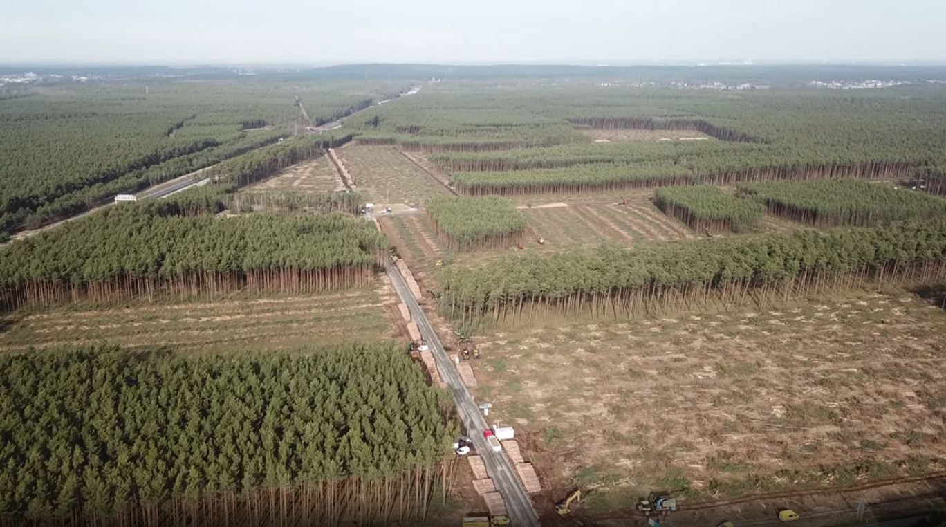 Gigafactory Berlin tree clearing