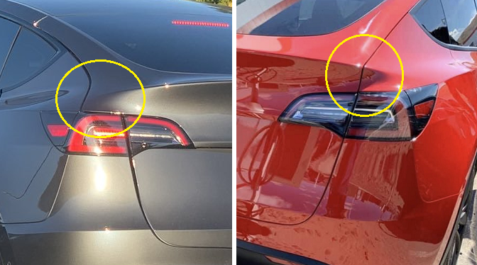 Model Y tailgate options