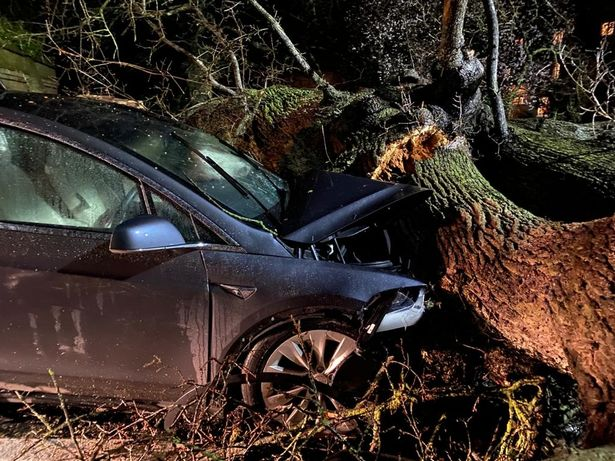Two Model X after tree crashes