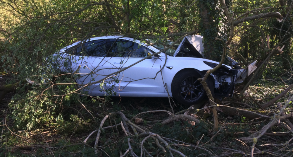 Tesla Model 3 crash into tree 4