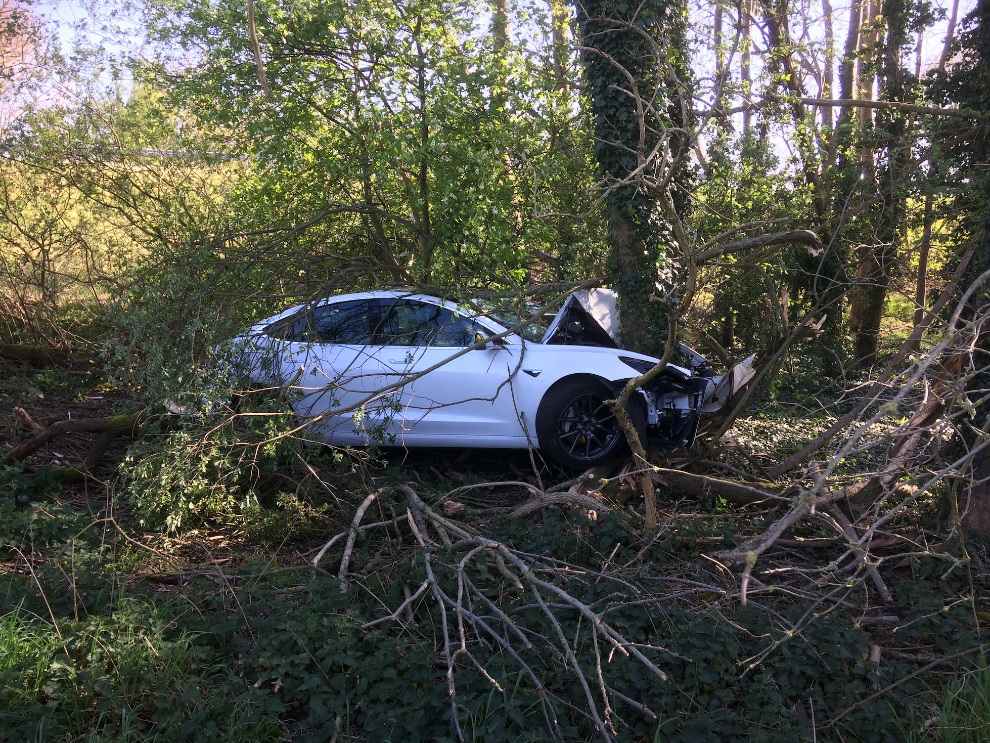 Tesla Model 3 crash into tree