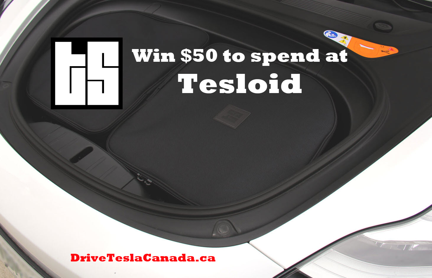 Tesloid giveaway