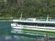 Maid of the Mist electric ferries