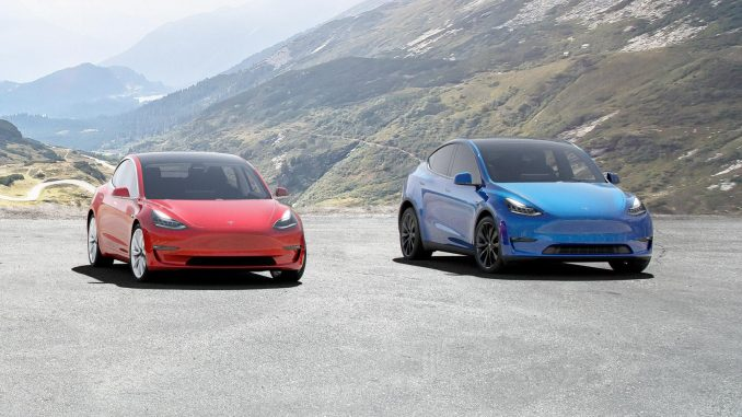 Model 3 and Model Y