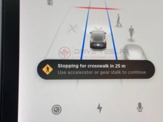 Tesla stopping for crosswalk DTC