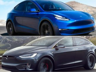Model X and Model Y